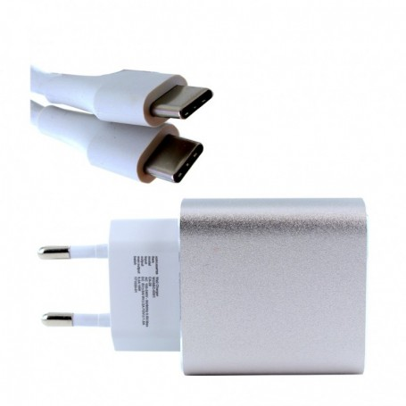 Google CA-29 Fast Charger + Type C 3.0A