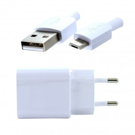 Huawei, HW-050200E01, charger + Data cable MicroUSB, white